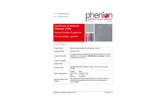 Human primary cell culture for Phenion skin model