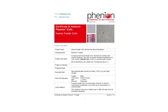 phenion-skinmodel-keratinocytes2